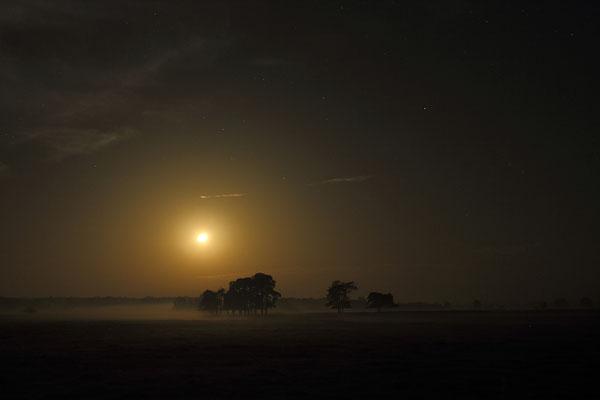 Monduntergang im Sternenpark