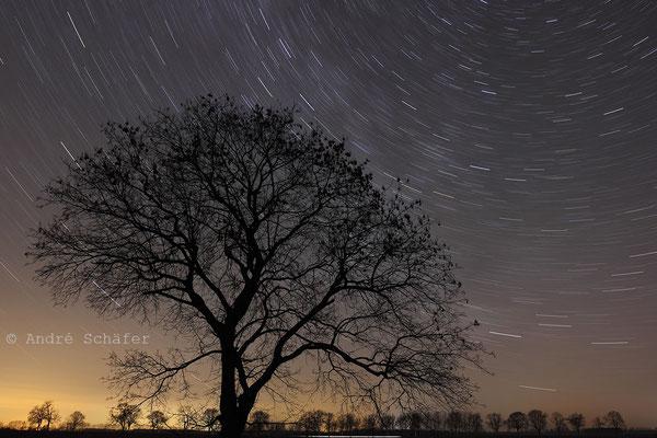 Strichspur der Sterne um den nördlichen Himmelspol