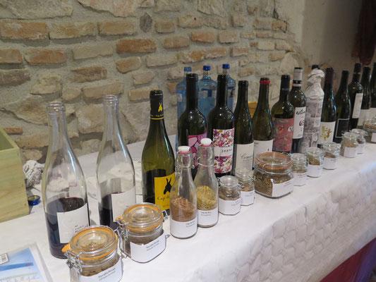 初日の朝9時半からのセミナーで試飲したワインたち。すべて赤、ガルナチャ、カリニャンがメイン