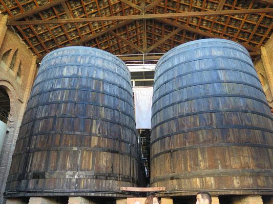 全員で見学に訪れた協同組合のベルモットの樽。1912年(だったかな??)から空になることなく活躍してるそうです。