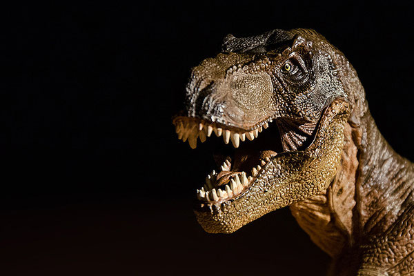 Tabletop: T-Rex-Porträt