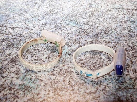 Meine ersten Leder-Gummiring-Halsbänder, noch mit S-Clip.