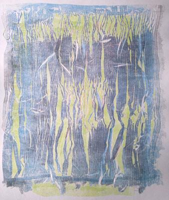 Monotipia 58 cm x 49 cm