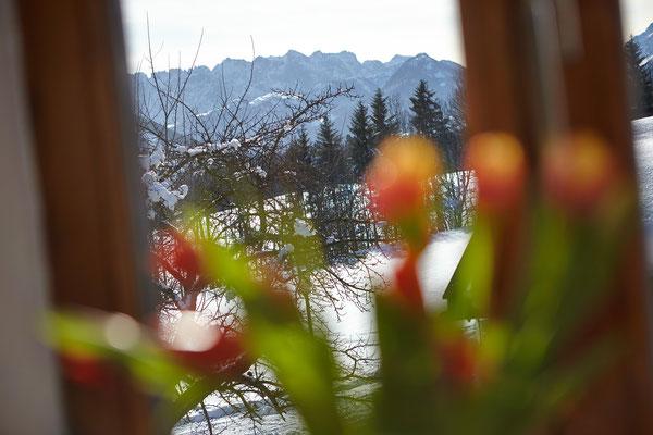 Blick aus Zimmer 2 in das Kaisergebirge