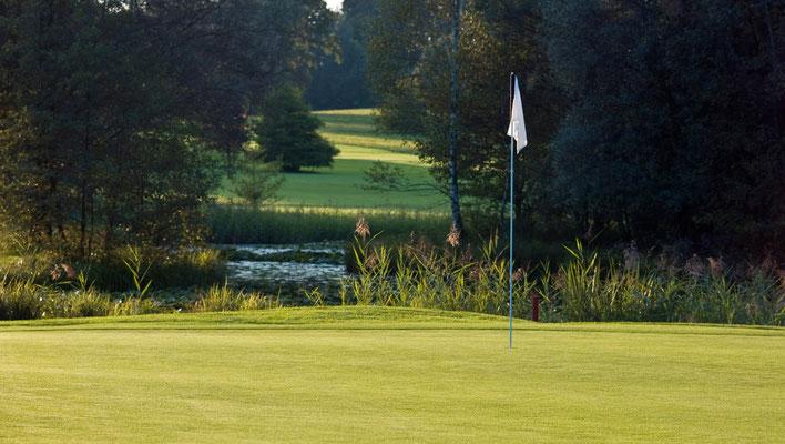 Golfplatz, das Grün
