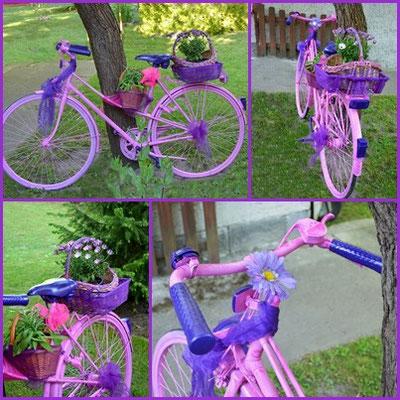 das alte Fahrrad erstrahlt nun im neuen Design