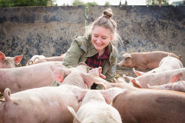Sabine Eckart und Ruhrtaler Freilandschweine :-)