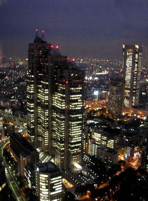 Depuis le sommet des tours jumelles de Shinjuku (Mairie de Tokyo)   2009©A-M Uyttenbroeck