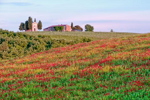 Tuscany San Quirico Italy
