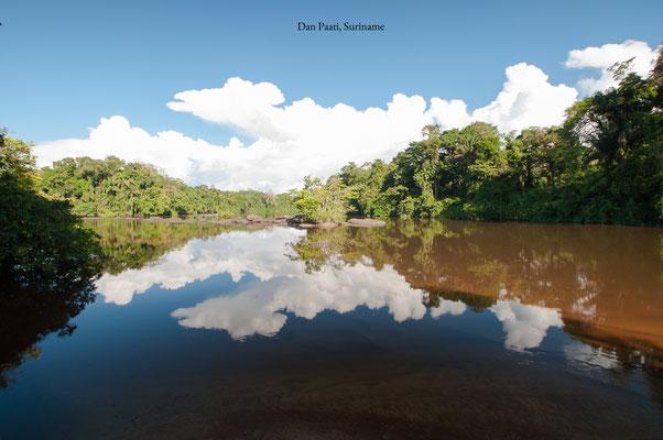 Suriname Dan Paati Waterscape