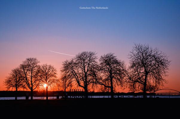 Gorinchem Merwede Netherlands Landscape Trees