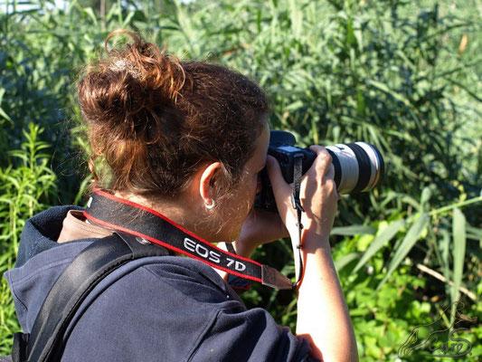 Ich in meinem Element, dem Fotografieren