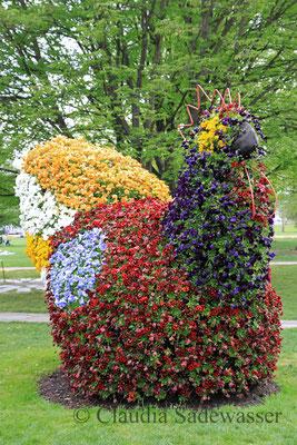 Blumenhuhn