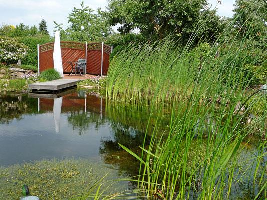 Schwimmteiche von GaLaBau Menzel