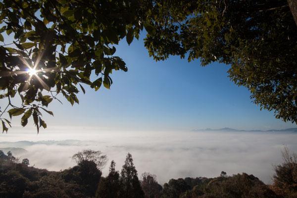 Yamaga sea of clouds