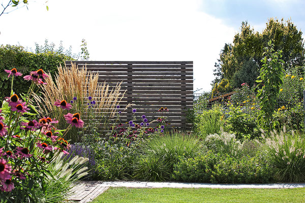 Pflanzen & Zaun