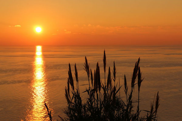 Ligurien | Cinque Terre | Levanto