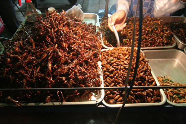 Deep-fried grasshoppers - Khao San Road - Bangkok