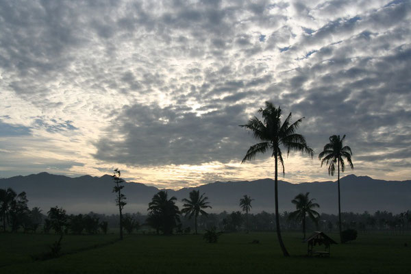 Sunrise north of Panti - Central Sumatra