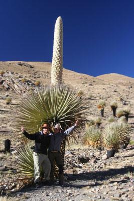 Vladimir, me and a Puya Raimondi - Cordillera Blanca