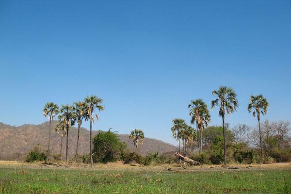 Nafiulu Hills - Liwonde National Park