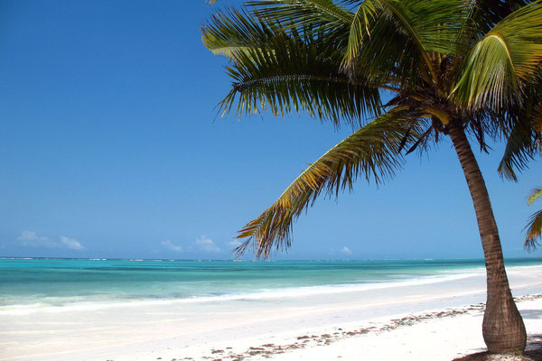 White sand beach - Pwani Mchangani - Zanzibar