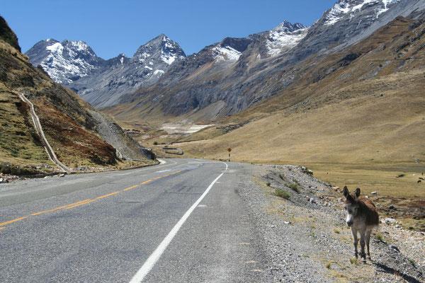 Road to Huallanca - Southern Cordillera Blanca - Peru
