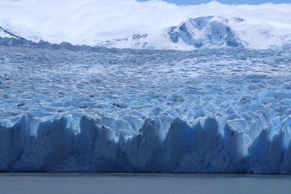 Grey Glacier - Torres del Paine National Park