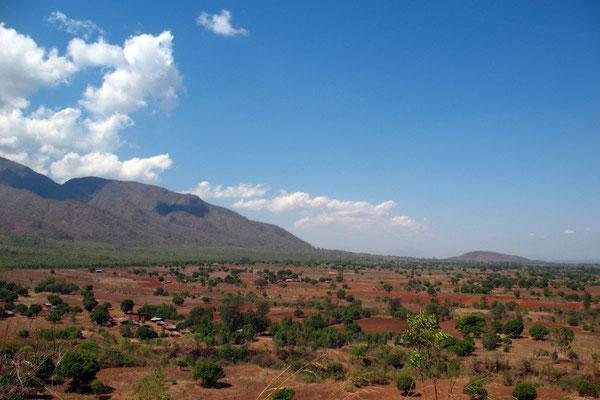 Zomba Plateau - North of Blantyre - Southern Malawi