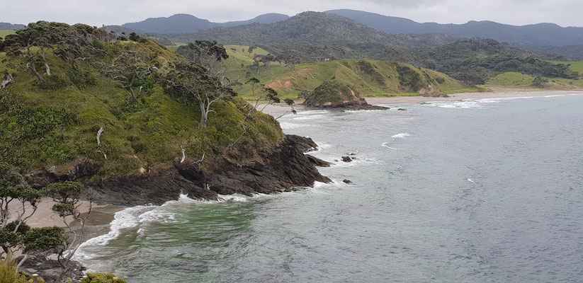 Taupiri Bay - North Island