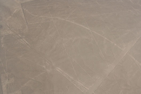The Hummingbird - Nazca Lines - Ica Province