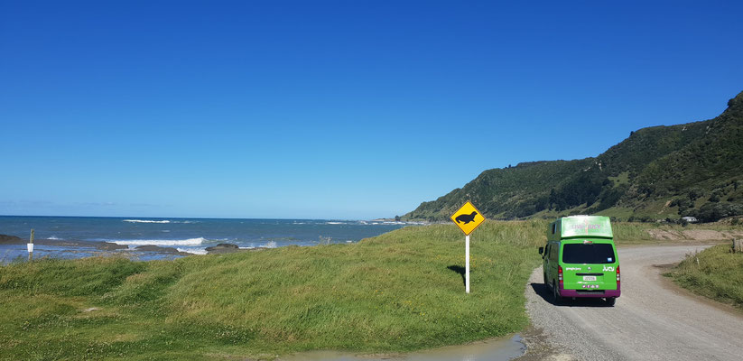 Te Araroa - Pacific Coast Highway - North Island