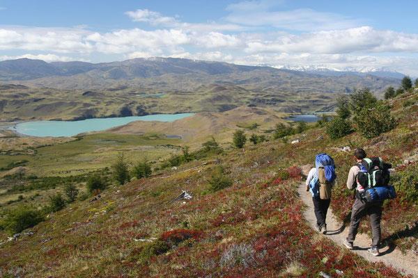 Trekking at Lago Nordenskjöld - Torres del Paine National Park