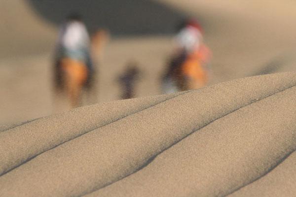 Camel riding - Sam Sand Dunes - Rajasthan