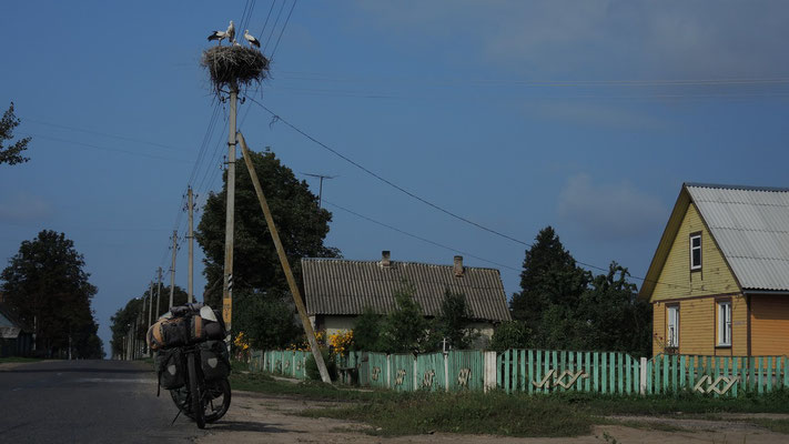 South of Babrujsk - Belarus