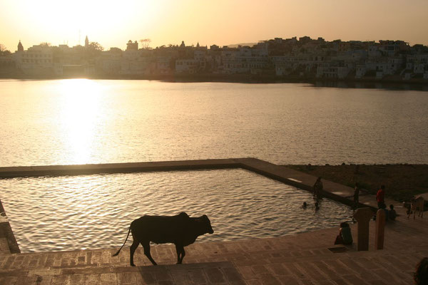 Sunset at Pushkar Lake - Pushkar - Rajasthan