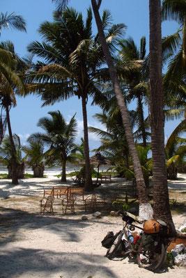 Guesthouse garden at Bwejuu Beach - Zanzibar Island