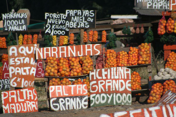 Fruits and vegetables on offer - North of Santiago