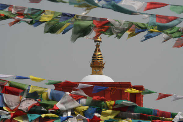 Tibetan prayer flags at Sacred Garden - Lumbini