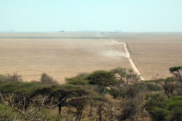 Endless Serengeti Plains - View from Naabi Hill
