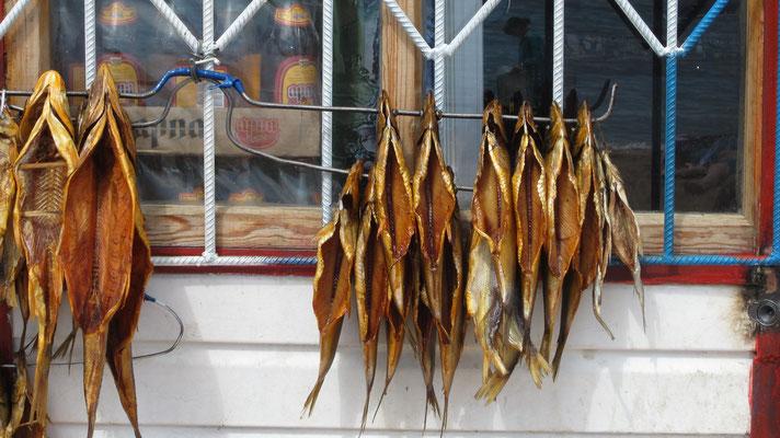 Smoked fish at the beach - Colpon-Ata - Kyrgyzstan