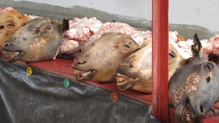 Ak-Tilek Bazaar - Karakol - Kyrgyzstan