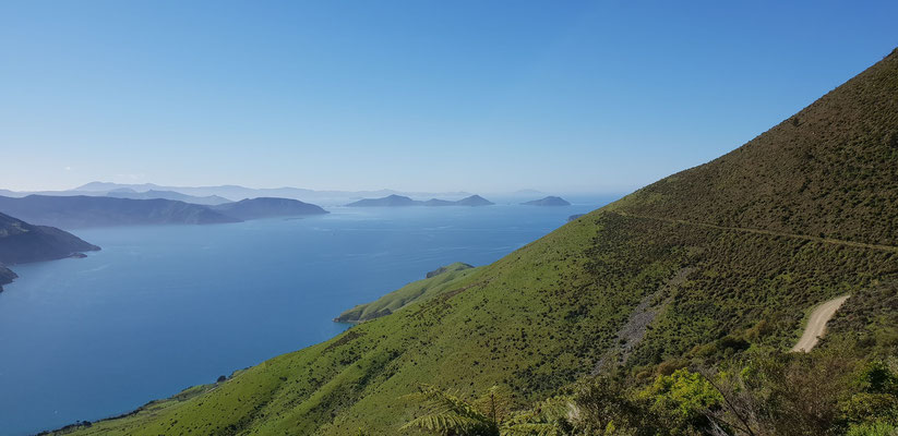Titirangi Bay - Marlborough Sounds - South Island