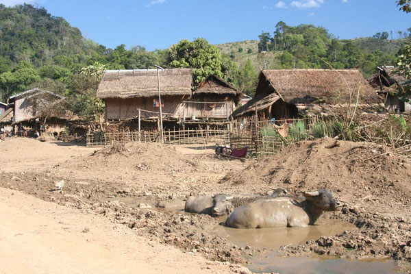Roadside village - Luang Nam Tha Province