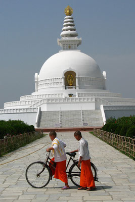 Monk novices at World Peace Pagoda - Lumbini