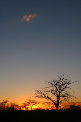 Sunset at Kalahari Desert - Eastern Namibia