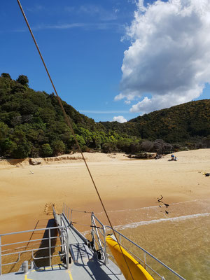 Abel Tasman Coast Track - Abel Tasman Nationalpark - South Island
