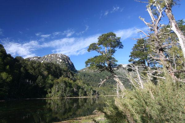 Villarica National Park