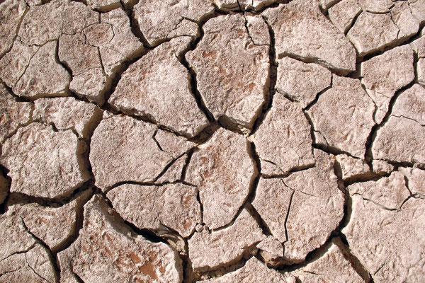 Dry pans at Sossusvlei - Namib Desert