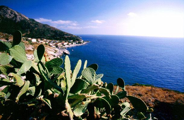 Pomonte - Western Elba